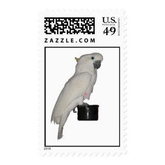 Cockatoo Postage