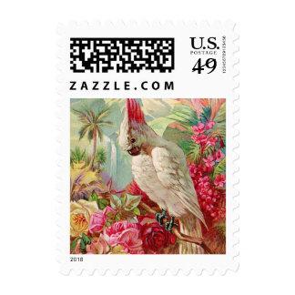 Cockatoo & Roses Vintage Art Postage Stamp