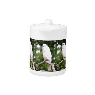 Cockatoo Teapot