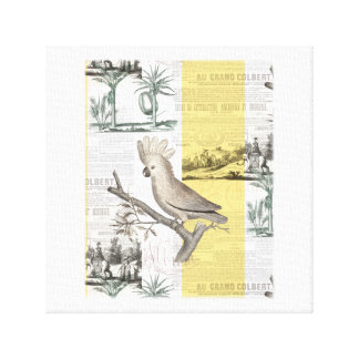 Cockatoo Tropical Toile Canvas Print