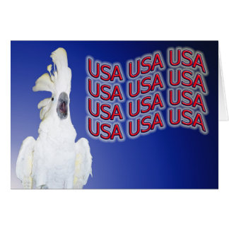 Cockatoo USA Small Note Card