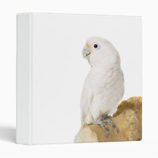 Cockatoo white parrot bird beautiful photo album 3 ring binder