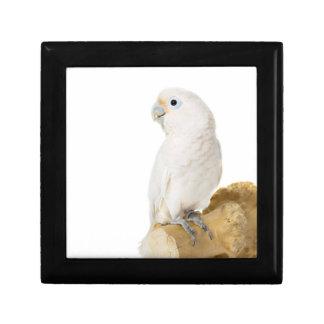 Cockatoo white parrot bird beautiful photo, gift jewelry box