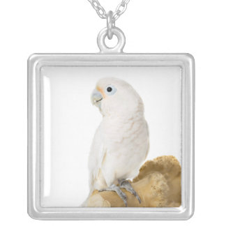 Cockatoo white parrot bird beautiful photo, gift square pendant necklace