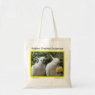 Cockatoos con cresta del azufre