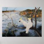 Cockatoos con cresta del azufre en las montañas az impresiones