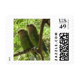 Cockatoos On Postage Stamps