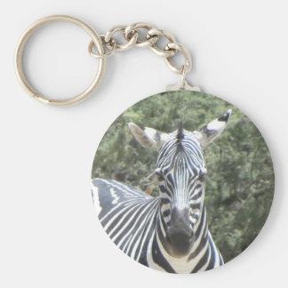 Cocked-ear zebra keychain