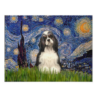 Cocker (BW) - Starry Night Poster