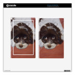Cocker spaniel adorable kindle fire skins