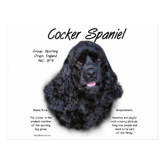 Cocker Spaniel (black) History Design Postcard