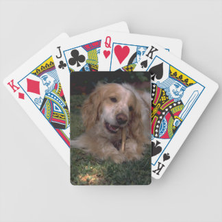 Cocker Spaniel Dog Playing Cards