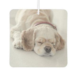 Cocker spaniel dog sleeping air freshener