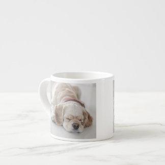 Cocker spaniel dog sleeping espresso cup