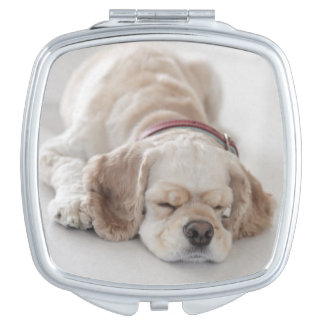 Cocker spaniel dog sleeping makeup mirror