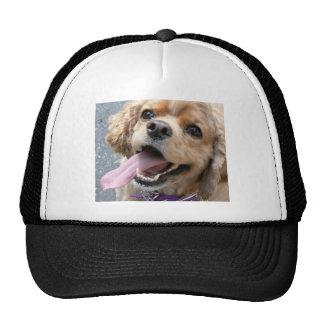 Cocker Spaniel Enthusiasm Mesh Hat