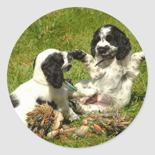 Cocker Spaniel Fun Classic Round Sticker