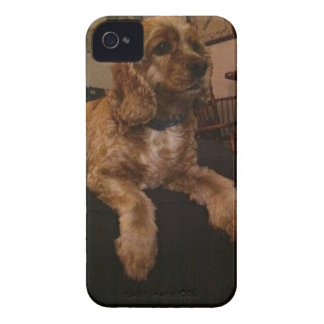 Cocker Spaniel iPhone 4 case