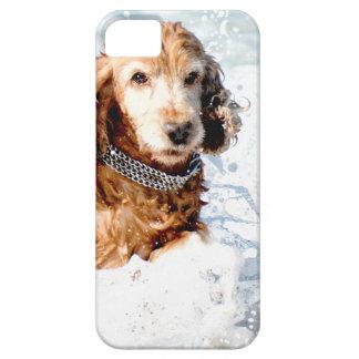 Cocker Spaniel iPhone SE/5/5s Case