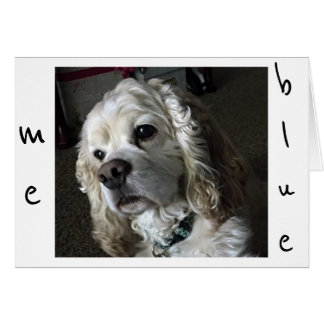 """COCKER SPANIEL IS """"BLUE"""" WITHOUT """"YOU"""" CARD"""