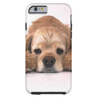 Cocker spaniel lindo funda de iPhone 6 tough