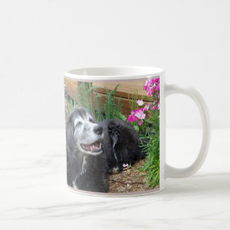 Cocker Spaniel Muffin Mug