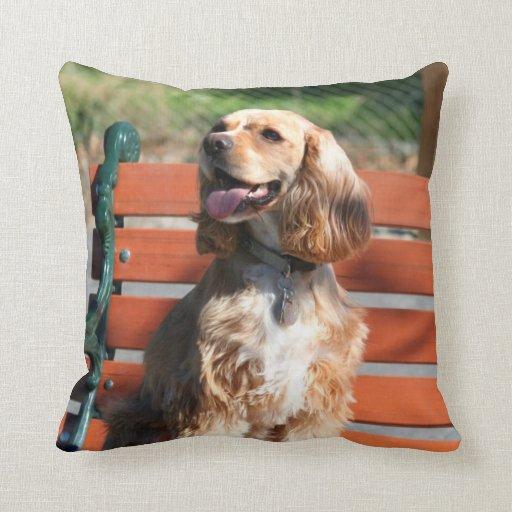 Cocker Spaniel Pillows