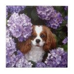 Cocker Spaniel Play With Purple Flowers Ceramic Tile