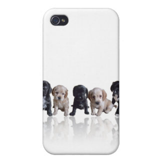 Cocker Spaniel Puppies iPhone4 Cover