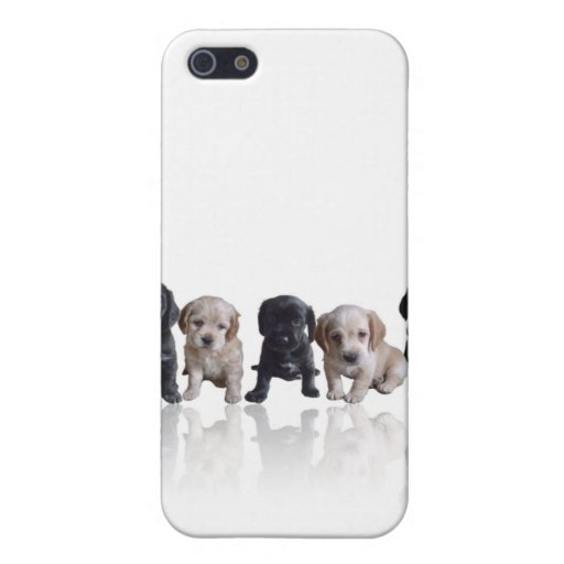 Cocker Spaniel Puppies iPhone4 Cover Cases For iPhone 5