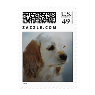 Cocker Spaniel puppy - adopt today! Stamps