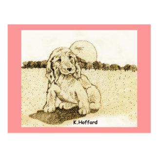 Cocker Spaniel Puppy Postcard