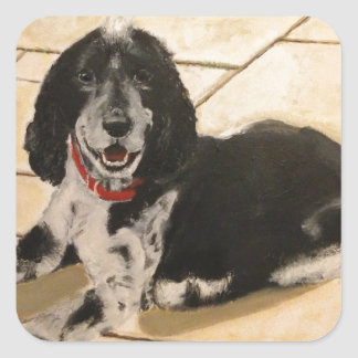 Cocker Spaniel Square Sticker