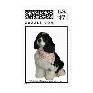 Cocker Spaniel Stamp