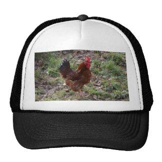 Cockerel Trucker Hat