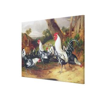 Cockerels in a Landscape Canvas Print