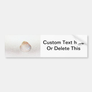 cockle shell back light seashell bumper sticker
