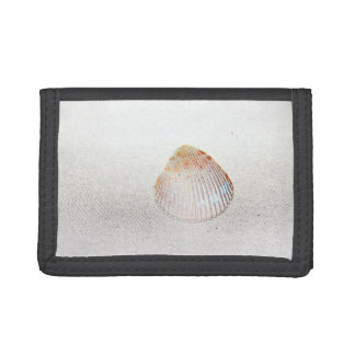 cockle shell back light seashell tri-fold wallets