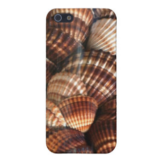 Cockle Shells Cover For iPhone SE/5/5s