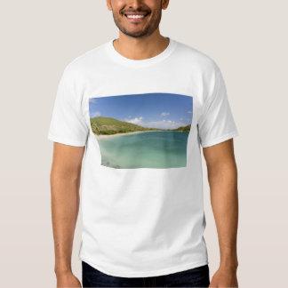 Cockleshell Bay, southeast peninsula, St Kitts, Shirts