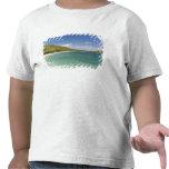 Cockleshell Bay, southeast peninsula, St Kitts, Shirt