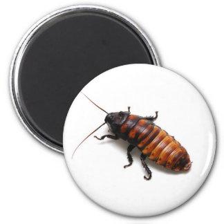 Cockroach 2 Inch Round Magnet