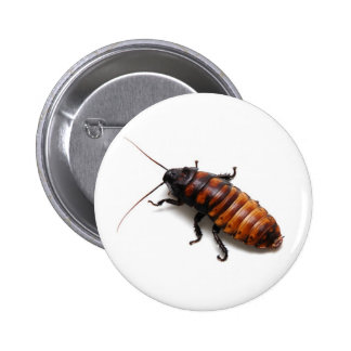 Cockroach Pins