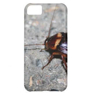 Cockroach! Case For iPhone 5C