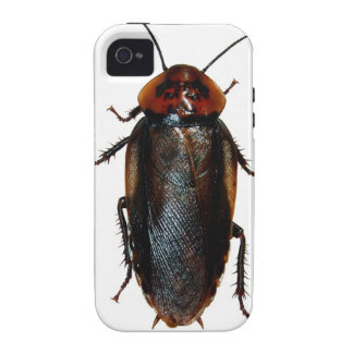 Cockroach iPhone Case Case-Mate iPhone 4 Cases