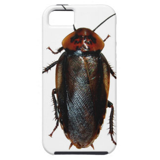 Cockroach iPhone Case iPhone 5 Covers
