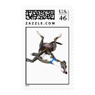 Cockroaching Stamps