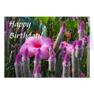 Cockscomb and Hibiscus Greeting Card