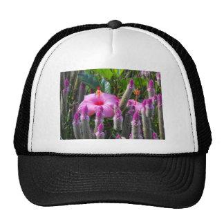 Cockscomb and Hibiscus Trucker Hat