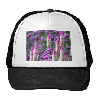Cockscomb Field Trucker Hat